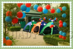 Shady Tents Birthday Party Photo